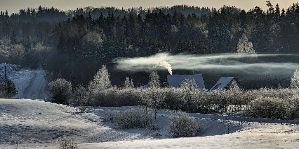 Ziemā ir diezgan maz saules un īsas dienas, tāpēc decembrī augu valstībā ir miera periods, daba guļ. Visi procesi, arī elpošana, ir izteikti palēninājušies.