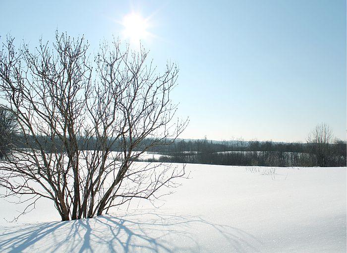 Lauku ainava ziemā.