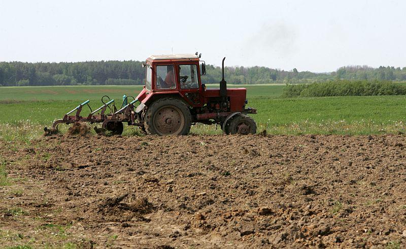Traktors apstrādā zemi.