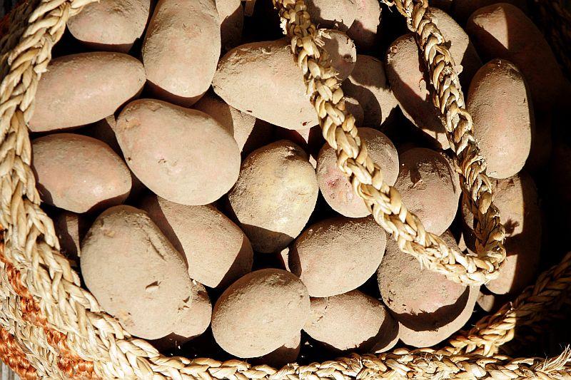 Kartupeļi.
