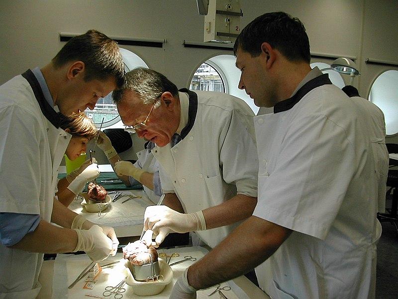 Pēteris Stradiņš (no kreisās) jaunu sirds vārstuļu ķirurģiskās ārstēšanas metožu kursos Leidenes universitātes klīnikā Nīderlandē. Attēlā no labās dr. Jānis Volkolakovs juniors un Leidenes Sirds ķirurģijas centra vadītājs profesors Roberts Dions.
