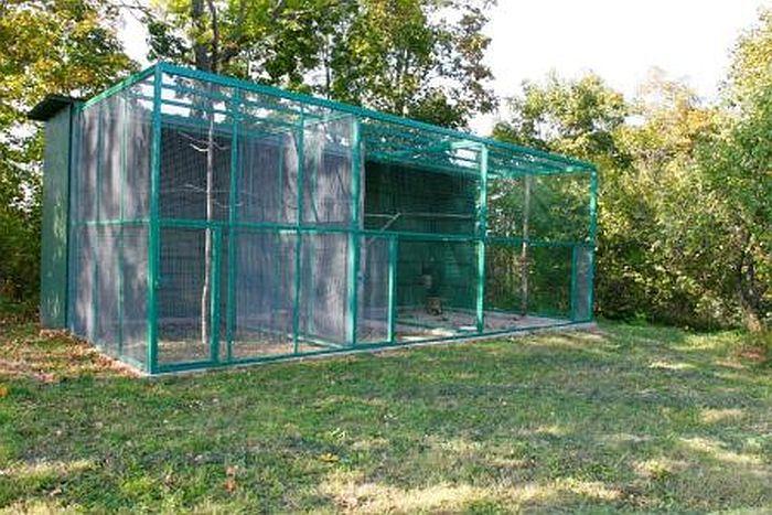 Savvaļas putnu rehabilitācijas stacija.