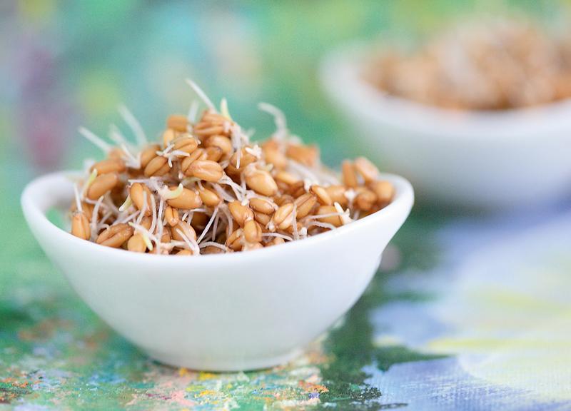Kviešu graudi
