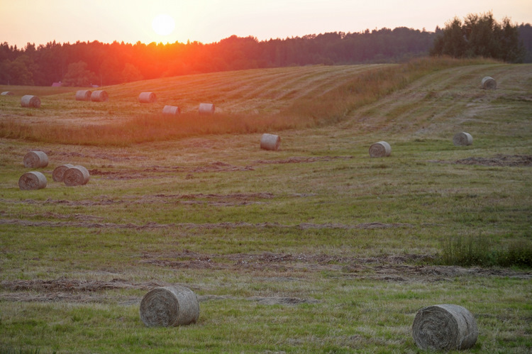Lauku ainava ar saulrietu pie Jaunpiebalgas.