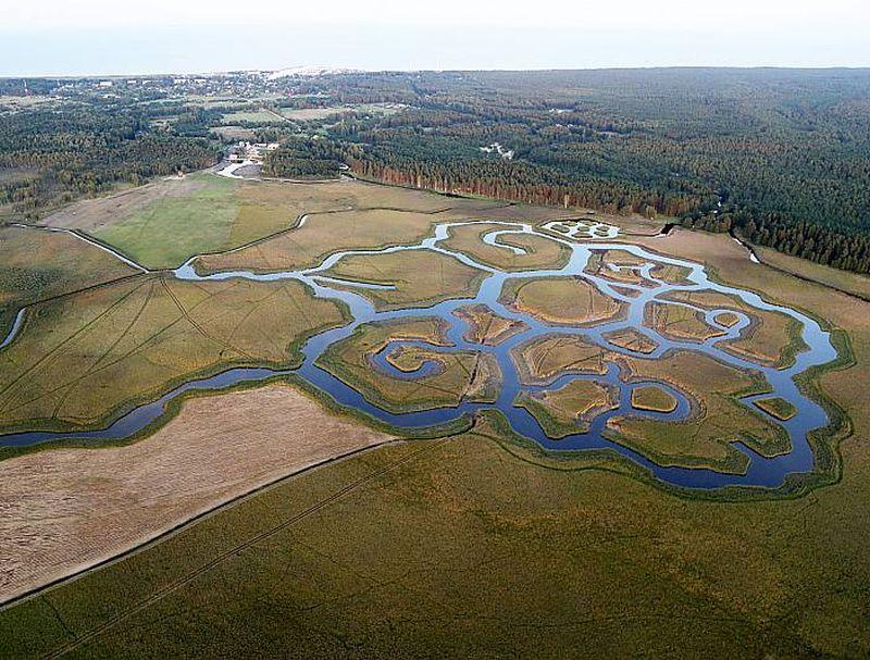 Kanālu mozaīka Engures ezera ziemeļu gala niedrājā nākotnē te būtiski palielinās ūdensputnu sugu daudzveidību.
