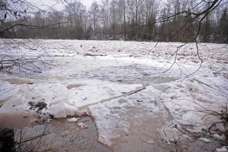 Ledus un vižņi Ogres upē.