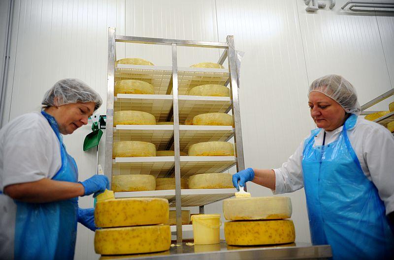 """Piena pārstrādes uzņēmuma SIA """"Latvijas Piens"""" siera ražotne."""