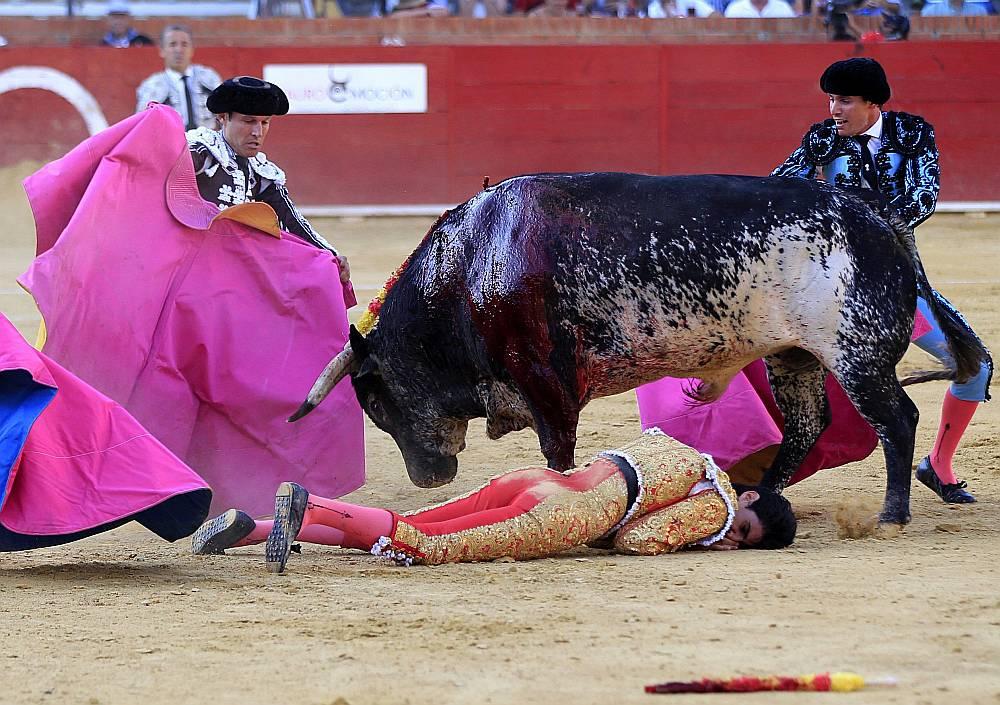 Spāņu toreadora Viktora Barrio nāve pēc vēršu cīņā Teruelā gūtajiem smagajiem ievainojumiem ir pirmais toreadora bojāejas gadījums 21. gadsimtā.