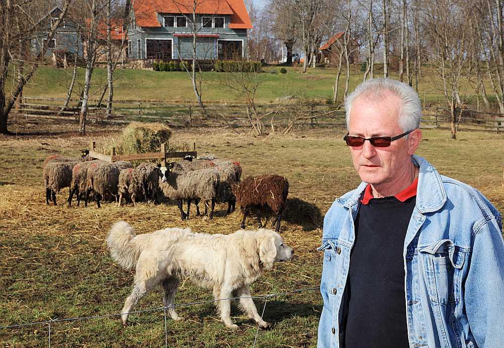 """SIA """"SF17"""" saimnieks Joahims Šultheiss: """"Lai eksports augtu, jāaug aitu skaitam, kā arī jāaudzē noteiktas šķirnes aitas. Es šoruden plānoju uz Baltkrieviju eksportēt vaislas dzīvniekus."""""""