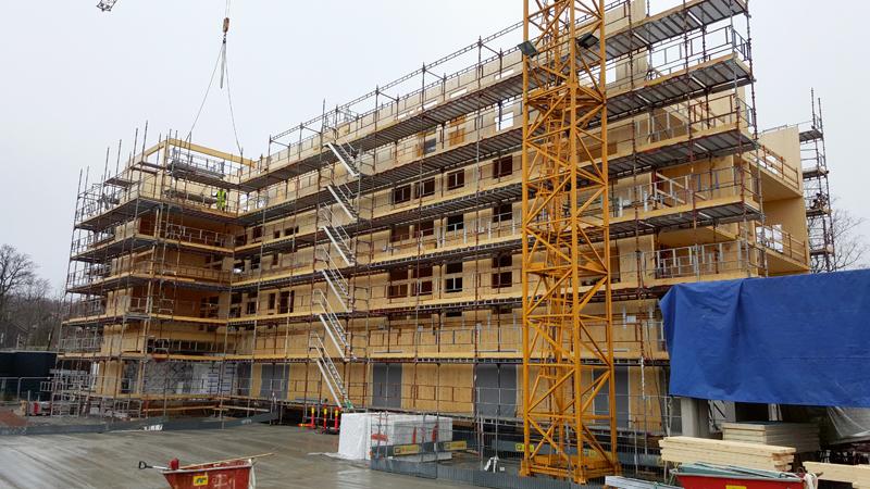 """Celtnieki montē SIA """"Cross Timber Systems"""" izgatavotās ēkas."""