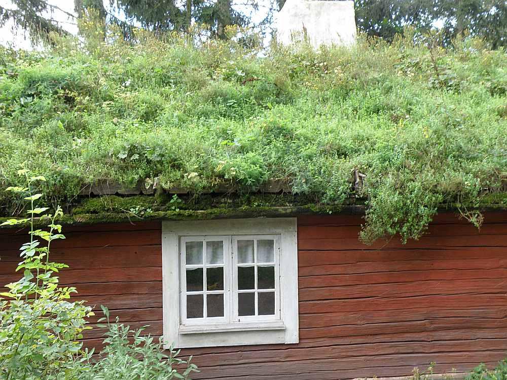Velēnu jumti Stokholmas brīvdabas muzejā. Šādus zāļu jumtus agrāk varēja redzēt arī Latvijā.
