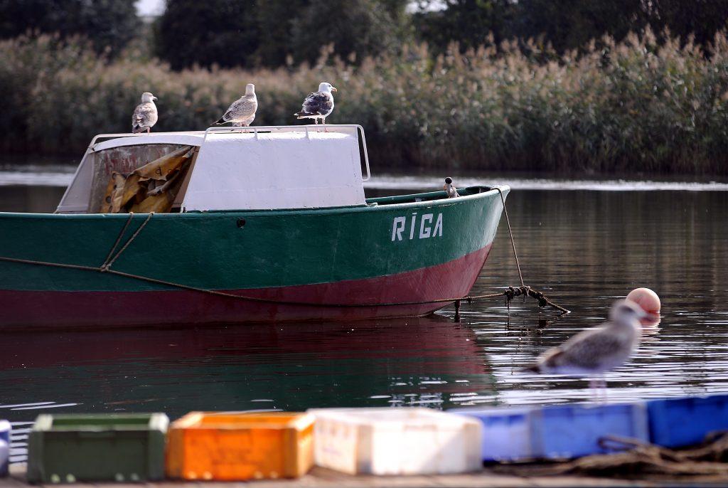 Zvejas laiva Daugavas grīvā.