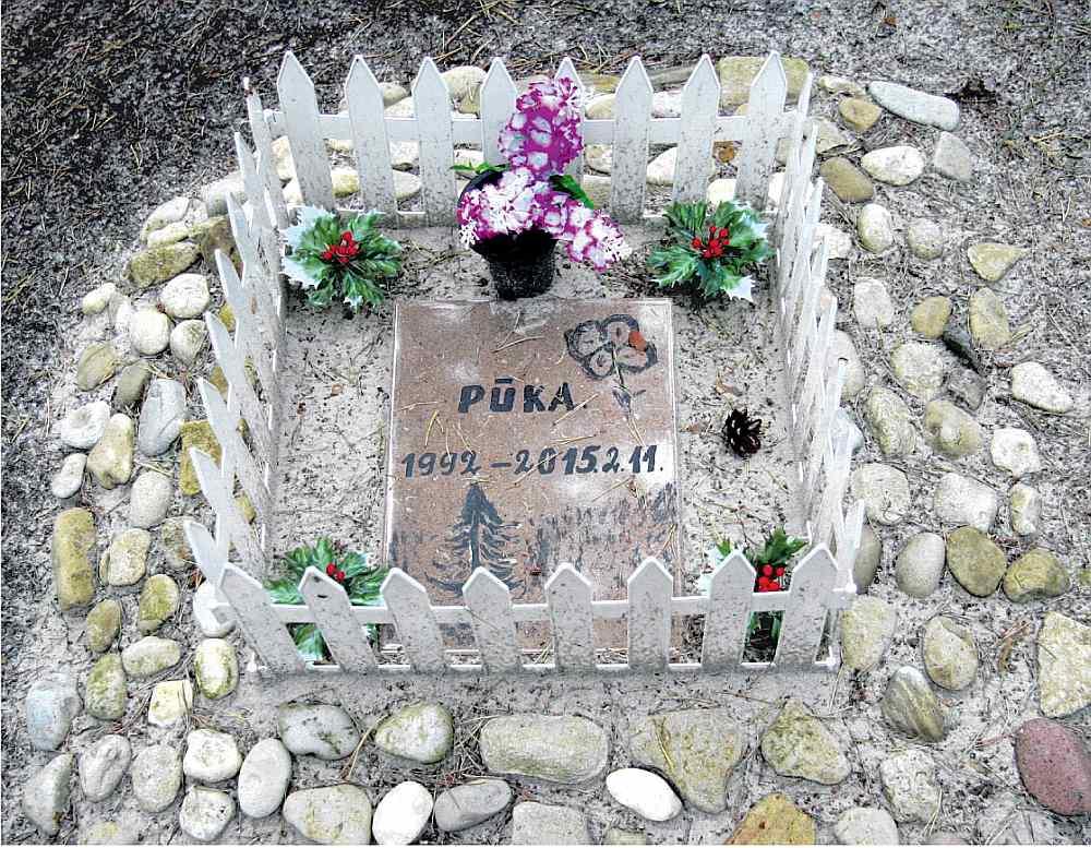 Starp Dienvidu kapiem un jūras liedagu stihiski izveidojusies mājdzīvnieku kapsēta. Pūkas kapu kopiņā pieminekļa vietā– ar bērna roku apgleznota flīze.