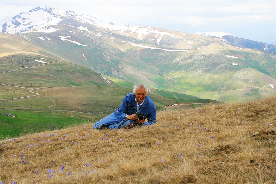 Krokusu pļavā Turcijā, Soģanli kalnu pārejā. Šis attēls rotā arī šogad izdoto J. Rukšāna monogrāfiju par krokusiem.