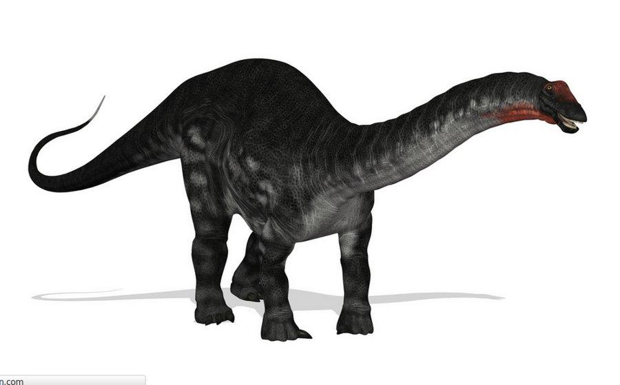 """Tiek uzskatīts, ka noslēpumainais Kongo purvu """"briesmonis"""" mokele-mbembe ir neizmiris zālēdājs dinozaurs apatozaurs."""
