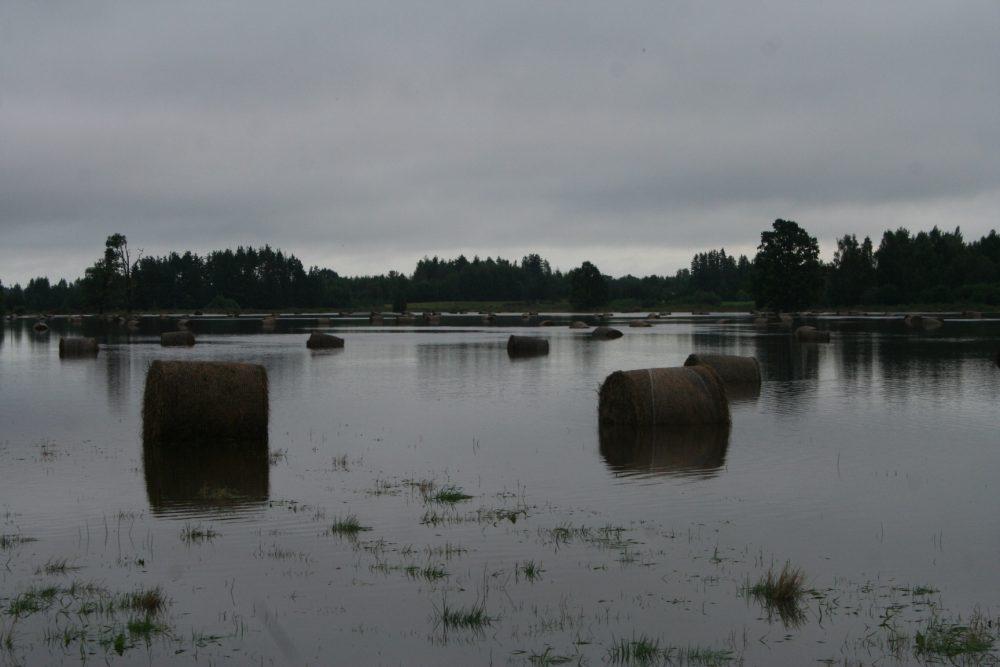 Applūdušās pļavas Baltinavā