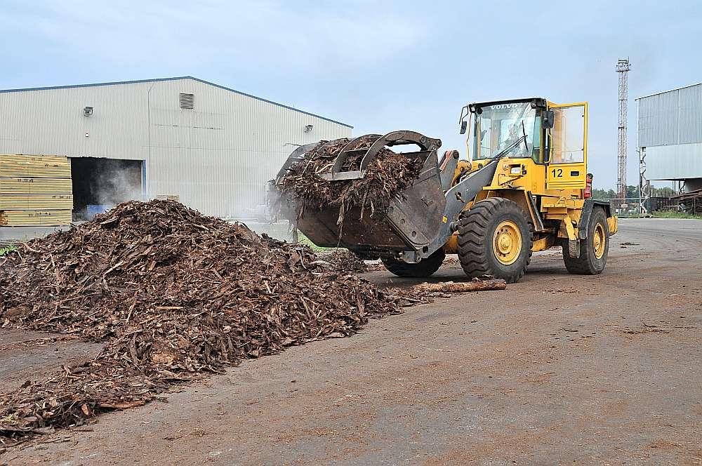 Meža nozarē strādājošie šādu ziemu un nemitīgos nokrišņus neatceras. Applūdušo mežu un mežu ceļu dēļ mežizstrādātājiem ir grūtības izvest koksni, tostarp šķeldu. Tas apdraud ne tikai šķeldas piegādes vietējiem siltumuzņēmumiem, bet arī piegāžu eksporta līgumus ar kompānijām Skandināvijā un citās valstīs.