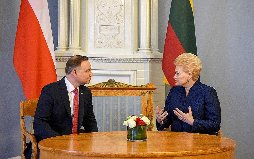 """Lietuva un Polija ieņem kopīgu negatīvu nostāju attiecībā uz gāzesvadu """"Nord Stream 2"""", paziņoja Lietuvas prezidente Daļa Grībauskaite pēc sarunām Viļņā ar Polijas prezidentu Andžeju Dudu."""