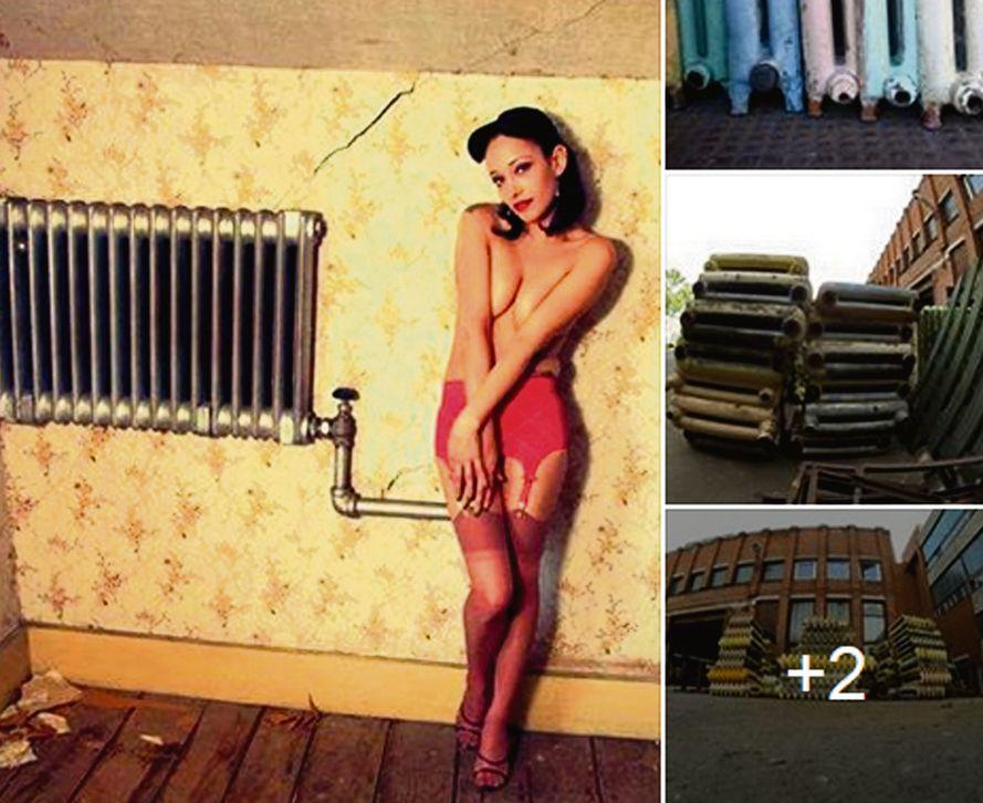 Linda Curika savā mājaslapā apkopo piemērus ar reklāmām, kurās atkailināts sievietes ķermenis izmantots dažādu preču un pakalpojumu reklamēšanai.