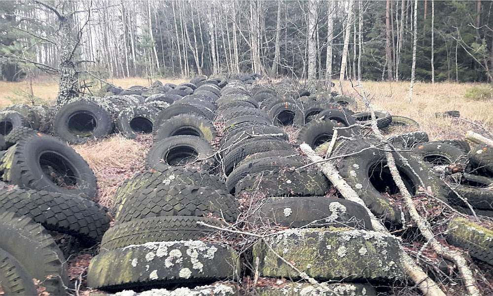 Pēc valdības noteikumiem, Latvijā jāpārstrādā 80% savākto riepu. Taču Latvijā ievestās riepas spēj pārstrādāt ar jaudu tikai līdz 30% no visiem apjomiem.
