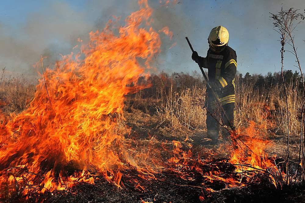 Valsts kontrole uzskata – ja Valsts ugunsdzēsības un glābšanas dienesta atalgojuma palielināšanai piešķirto naudu tērētu atbilstoši mērķim, tad katra ugunsdzēsēja alga mēnesī pieaugtu par 45 eiro.