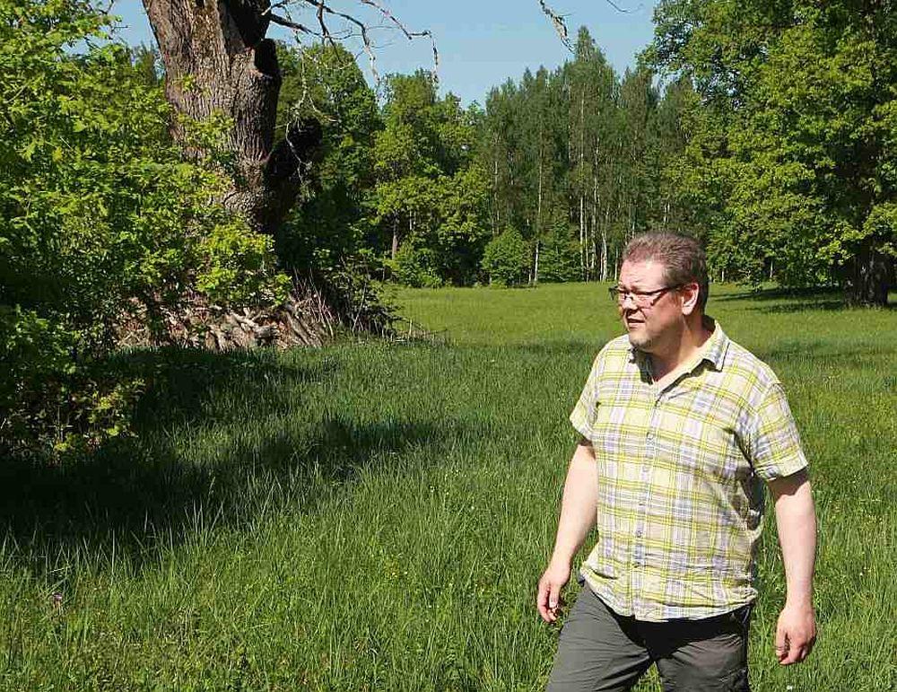 Biologs Viesturs Lārmanis teic, ka arī nokaltušu koku vajag atstāt ainavā, jo no bioloģiskās daudzveidības viedokļa tas dažkārt ir pat vērtīgāks nekā dzīvs koks.