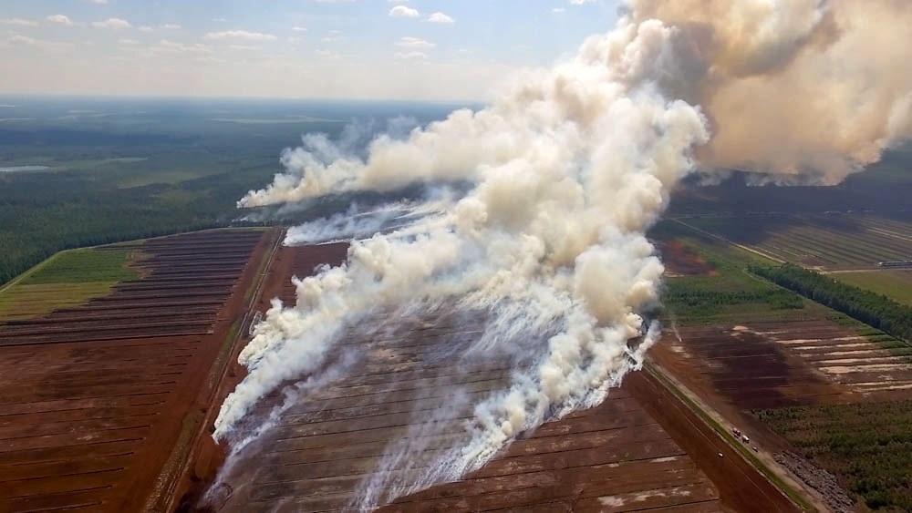 Talsu novadā izcēlies plašs mežu un kūdras ugunsgrēks, 18.07.2018.