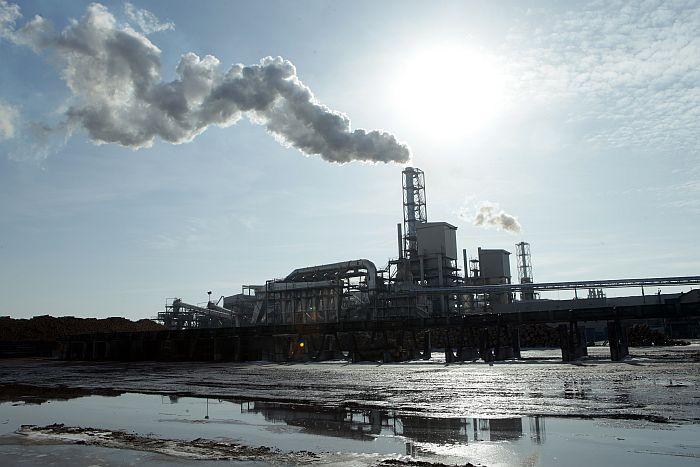"""Koksnes pārstrādes uzņēmums SIA """"Kronospan""""."""