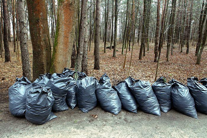 Atkritumu kaudzes Lielās talkas laikā Mežaparkā.