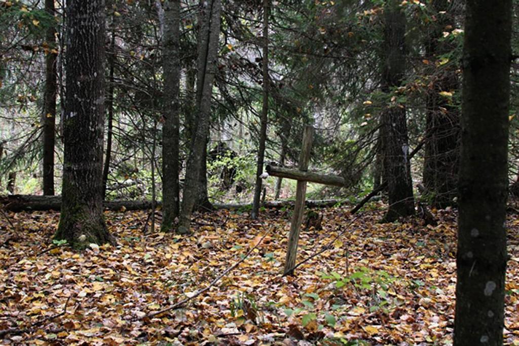 Stompaku partizānu nometnes vieta Viļakas novada Susāju pagastā. 2010. g. (O. Procevskas foto)