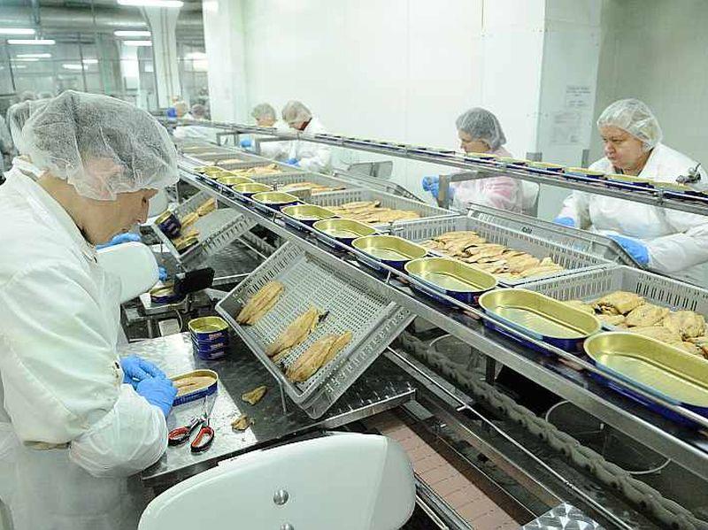 """Zivju pārstrādes uzņēmuma SIA """"Karavela"""" ražotnē."""