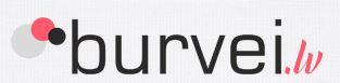 burveilv1