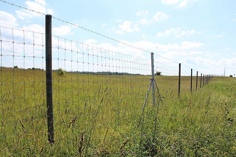 Demenes pagastā netālu no Latvijas robežas ar Baltkrieviju jau šobrīd redzams apmēram kilometru garš stiepļu žogs. To gan nav cēlusi Valsts robežsardze, bet vietējās mednieku saimniecības pārstāvji.