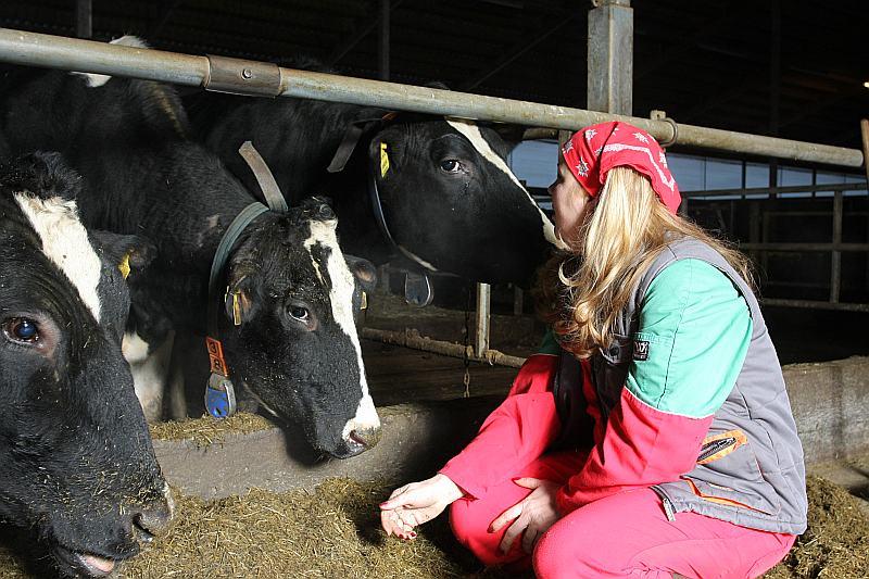 """Ieva Rutkovska, Beverīnas novada Kauguru pagasta saimniecības """"Vītoliņi"""" saimniece, ir Latvijas otrā produktīvākā ganāmpulka īpašniece."""