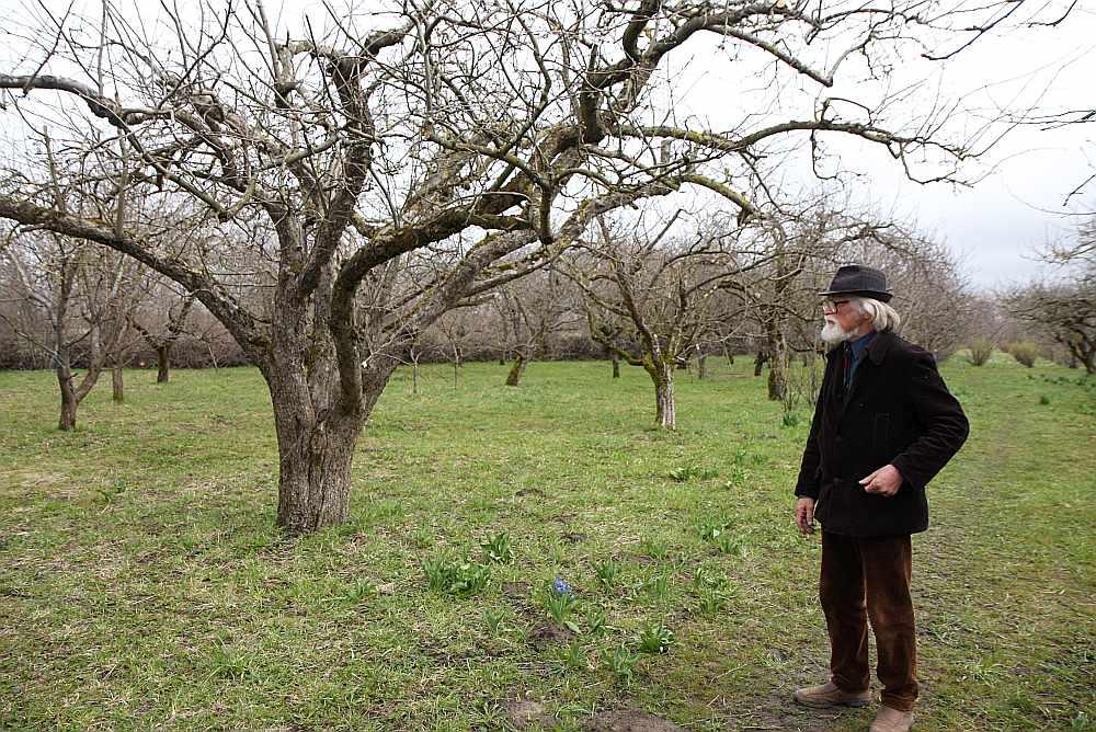 Otaņķu augļkopis Eglons Brūns aizraujas ar ābeļu selekciju, un viņa mērķis ir radīt šķirni, kas ne tikai neslimotu ar kraupi un vēzi, bet arī āboli ilgi glabātos. Selekcionārs divas savas ābeļu šķirnes veltījis leģionāru piemiņai – vienai devis vārdu 'Latviešu leģionārs', otrai – 'Leģionāru bērni'.