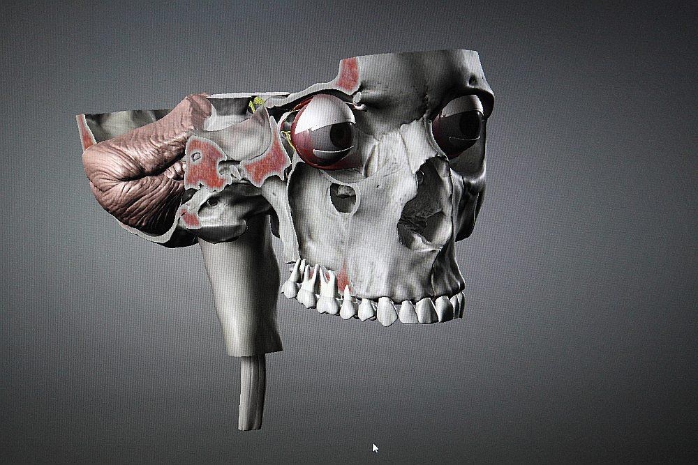 Interaktīvā lietotne viedtālrunī un programma datorā topošajiem ārstiem palīdz pilnvērtīgi apgūt cilvēka anatomiju trīs dimensiju (3D) formātā ar papildinātas realitātes iespējām.