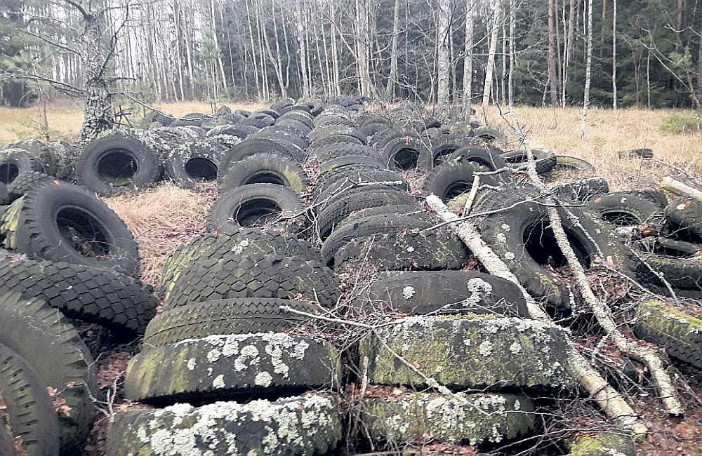 """Riepu kalni dabas parkā """"Pape"""" atrodas kopš Padomju Savienības laikiem. Trīsdesmit gadu laikā neviens tās nav aizvācis."""