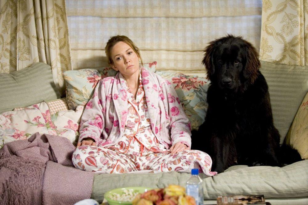 """Kadrs no filmas """"Meklēju suņumīli""""."""