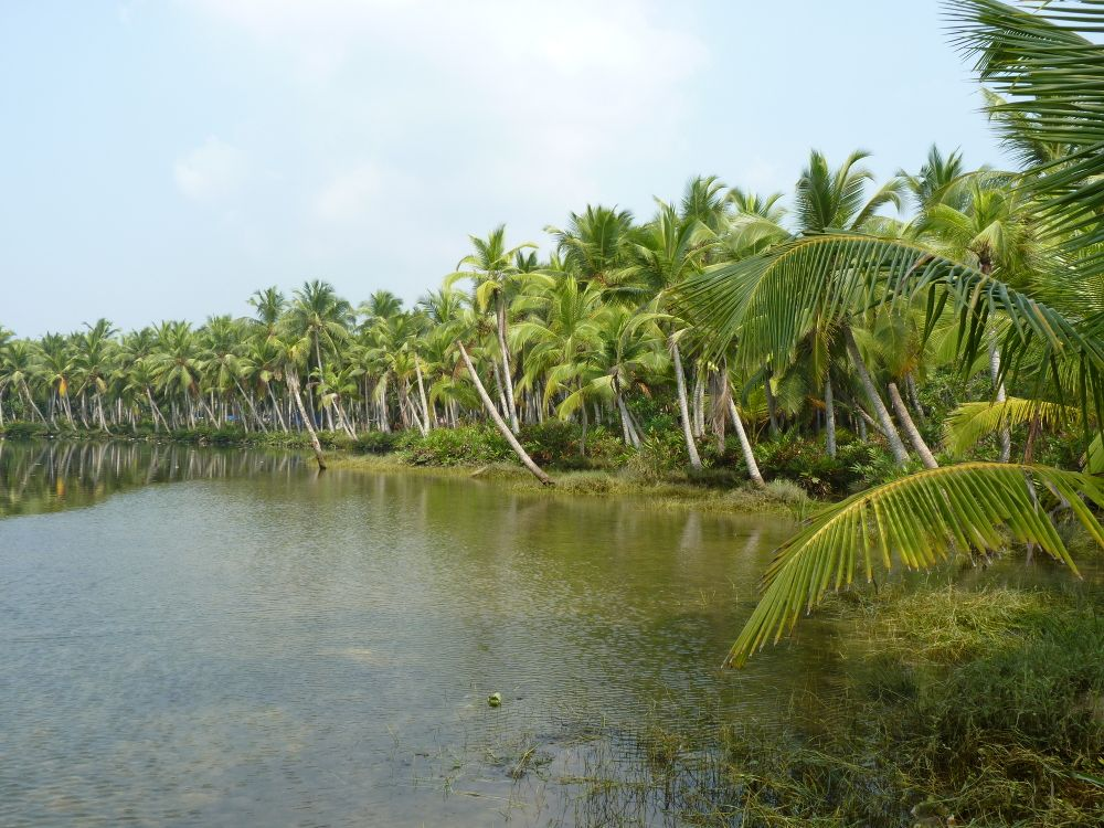 Kokospalmu ieskautā lagūna, tai apkārt- necaurejama biežņa.