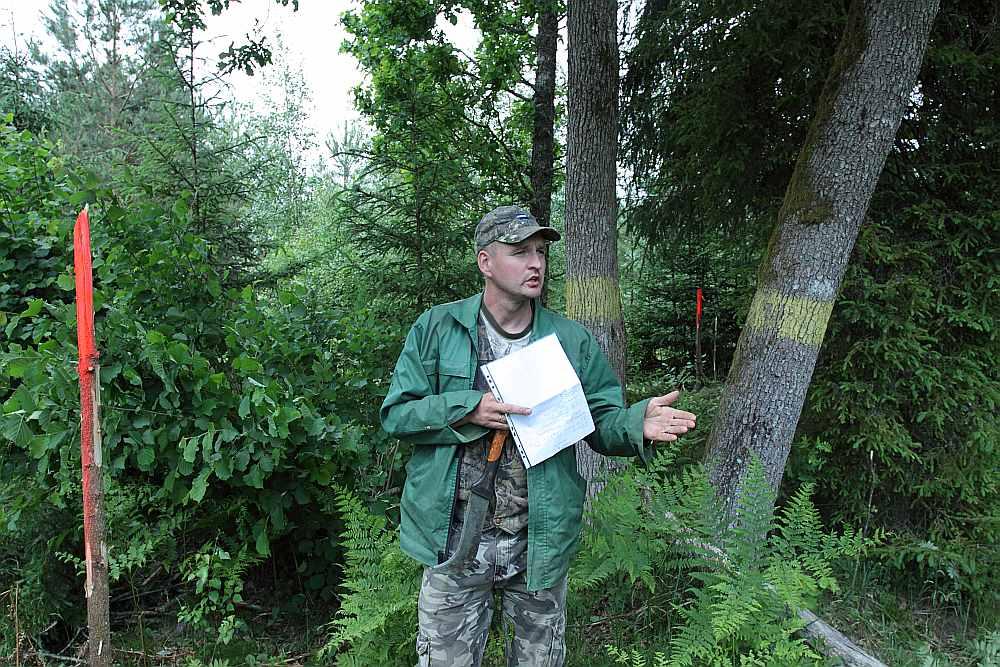 """Modra Fokerota meža īpašumu apsaimniekošanas pilnvarnieks Edvīns Martinsons rāda meža īpašumu Kurmāles pagasta """"Līdumos"""", kur, pārmērot kaimiņu meža īpašumu, robeža pārbīdīta par 20 metriem. Tā kā vairs nesakrīt divi robežpunkti, pēc šīs pārmērīšanas iznāk, ka 6,1 hektāra vietā īpašniekam paliek pāri vien 5,9 hektāri."""