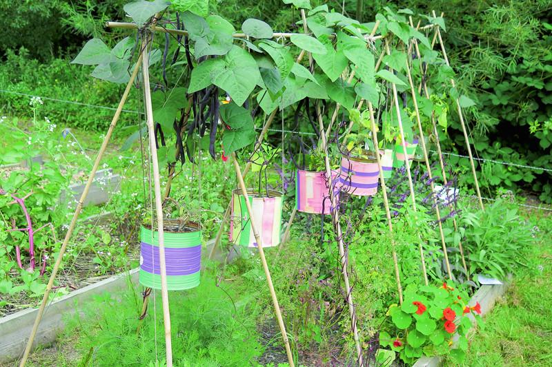 Balstu sistēmu pupiņām var apvienot ar augu stādīšanu divos stāvos. Tas sevišķi noderēs nelieliem dārziem. Turklāt pie vienas laistīšanas ūdens tiek visiem augiem– tas no podiem notek uz pupu saknēm.