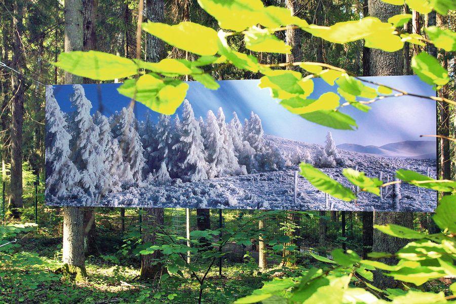 Nu gluži kā Latvijas ziema… Sarma Saimona pārejā Jaunzēlandes Dienvidalpos.