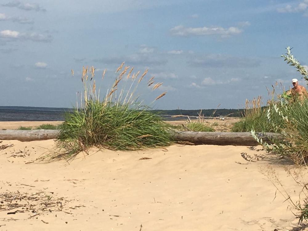 Aculiecinieka foto no rakstā minētās pludmales. Pa labi redzams nūdists, tālumā pašvaldības policijas auto.