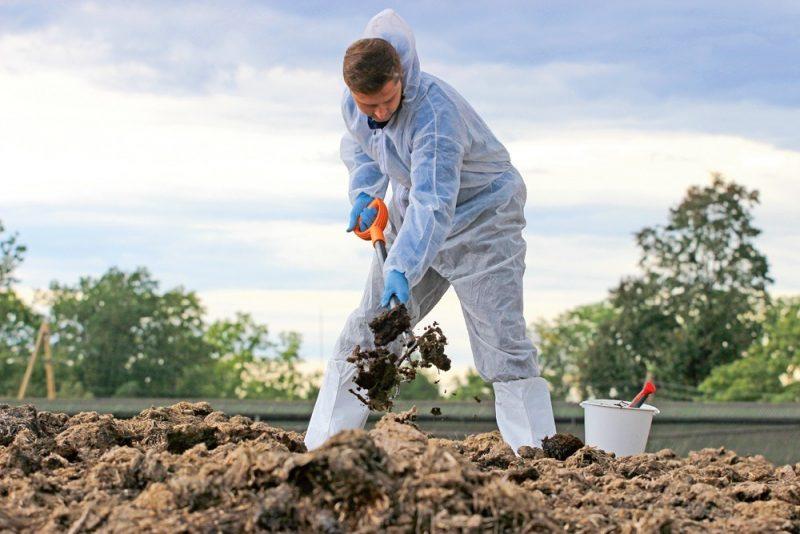 Kūtsmēsli tiek iedalīti vairākos veidos, no kuriem augsnei noderīgākie ir pakaišu kūtsmēsli.