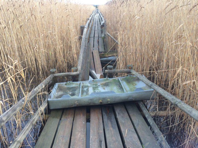 Pēc izdemolēšanas Dabas aizsardzības pārvalde spiesta apmeklētājiem slēgt populāro Kaņiera niedrāju laipu Ķemeru Nacionālajā parkā.