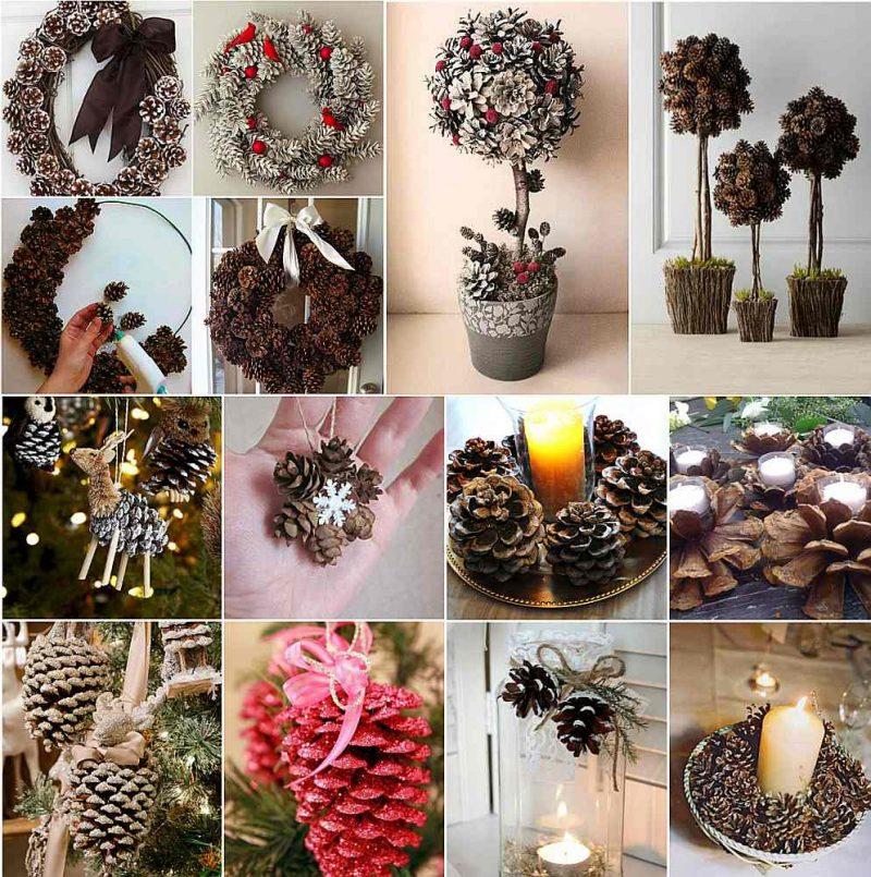 No čiekuriem var veidot dažādas dekorācijas, arī iecienīto topiāriju, ko mēdz dēvēt par naudas vai mīlestības koku.