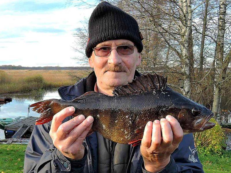 Alfons ar Lobes ezerā noķerto 1420 gramus smago asari.