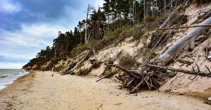 No Staldzenes – Liepenes krasta, kas atrodas apmēram 8 km uz ziemeļiem no Ventspils ostas mola, jūra ik gadu noskalo ap vienu līdz pusotra metriem. 2017. gada uzņēmums.