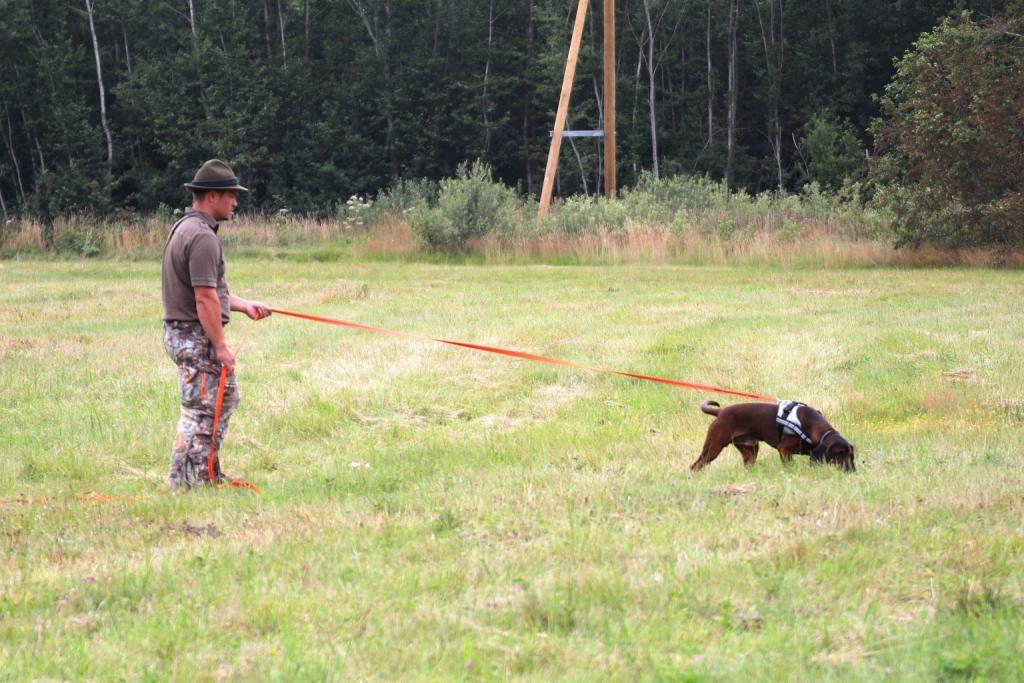 Māris Dimants ar suni asinspēdu treniņos.
