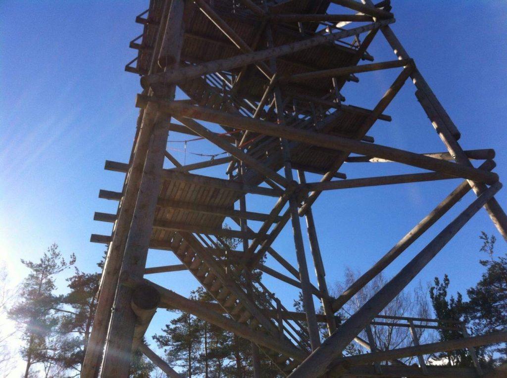 Liepukalna skatu tornis